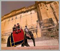 Elephant Ride in Jaipur